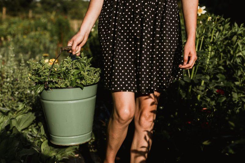 wroskhopy vazba kytic leto kytkyodpotoka - Poukaz na květinový workshop - Kytky od potoka