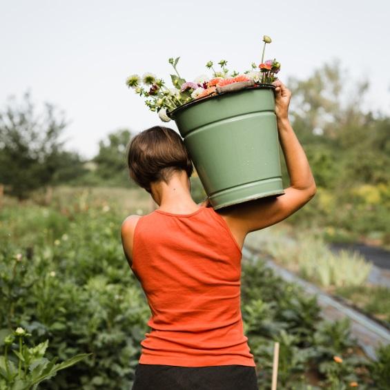 Naruc kvetin z pole Kytky od potoka - Poukaz na květinový workshop - Kytky od potoka