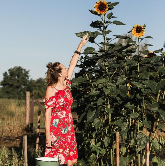 Komentovany samosber Kytkyodpotoka - Poukaz na komentovaný sběr květin - Kytky od potoka