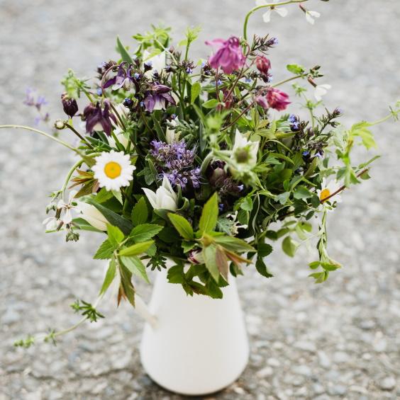 Jarni kvetinove predplatne Kytkyodpotoka 2020 - Jarní květinové předplatné - Kytky od potoka
