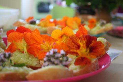 Kytky od potoka jedle kvety